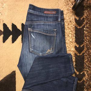 Express Distressed Skinny Jeans Size 4 Long